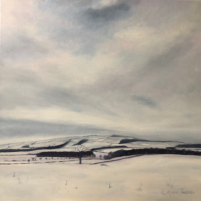 Northumberland hills on a winter's day