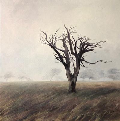 Windswept tree on a misty fell
